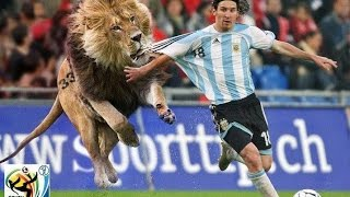 Funny Soccer Moments + Bonus When Soccer Fans Invade the Pitch!