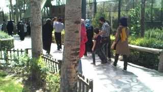 حديقة الطيور في أصفهان!!