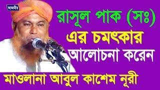 রাসুল পাক (দঃ) এর আলোচনা   Mawlana Abul Kashem Nuri   Bangla Waz   Azmir Recording   2017