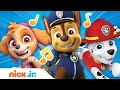 PAW Patrol Theme Song Nick Jr Music