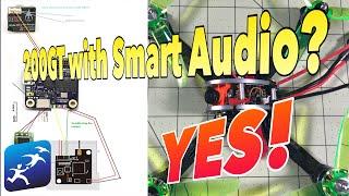 Installing a KingKong LDARC 200GT with Runcam TX200U VTX. How to setup the SoftSerial & Smart Audio