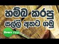 Fiverr | How to Withdraw Money to the ATM machine in සිංහලෙන් Sinhala