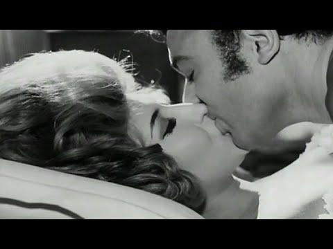 Xxx Mp4 Habibi Arab Film Festival Donor Program 3gp Sex