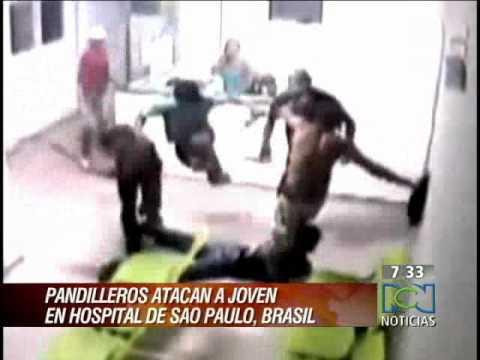 Video impresionante golpes estrellos ataques de animales e.t.c