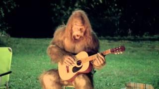 Messin With Sasquatch Guitar Playing. Shredding.mp4