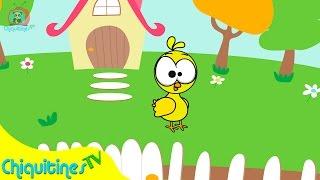 Pollito Chicken - Canción Infantil