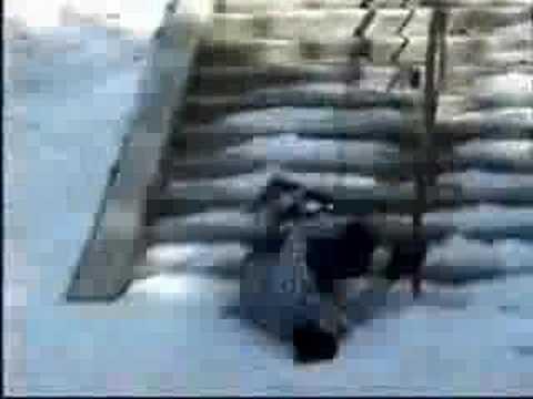 VIDEOS ESTUPIDOS I STUPID VIDEOS 1