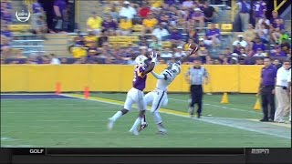 crazy amazing catch by Shamier Jeffery in LSU vs South Carolina 2015