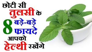 8 Health Tips In Hindi By Tulsi Benefits - Natural Health Tips In Hindi- छोटी तुलसी के 8 बड़े फायदे