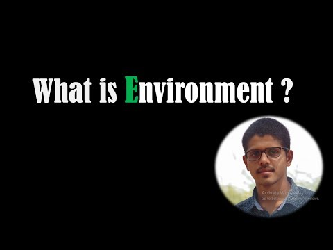 What is Environment