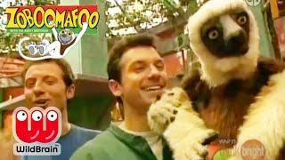 Zoboomafoo | Dinosaur Adventure With Lemur |  Episode Animals For Kids
