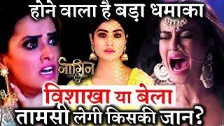 Naagin 3 Maha TWIST : Taamsi will KILL BELA / VISH