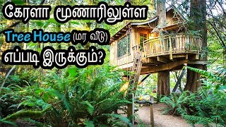 Vlog#4: Best Tree House in Munnar Kerala | கேரளா மூணாரிலுள்ள Tree House எப்படி இருக்கும்?