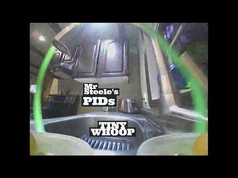TINY WHOOP Powerloop! Beeductrix PIDs - Micro FPV Drone