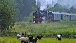 38 1772 unter Volldampf von Neheim nach Sundern | Röhrtalbahn | 10.06.1990
