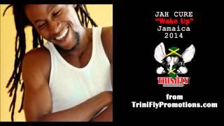 NEW Jah Cure -