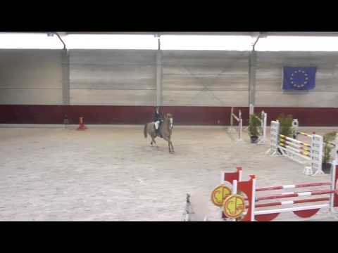 Jumping - Azire d'Eoipus - Gesves - 11/01/14 - Obstacle 120cm
