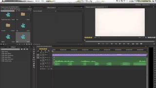 Explainer Video Editing - Voiceover Optimization