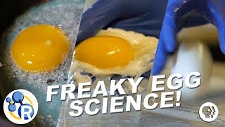 3 Egg-cellently Weird Science Experiments