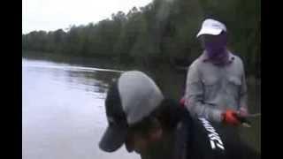 Suke BlackBass Estuary 151213