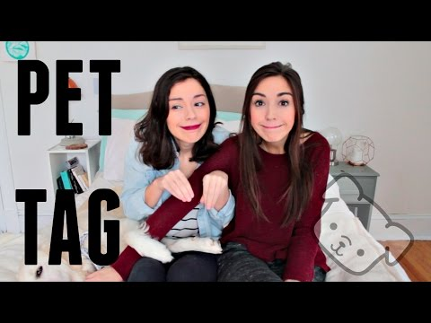 PET TAG | Lesbian Couple | Allie and Sam