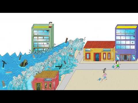 ¿Qué es un Tsunami y cómo se reproduce