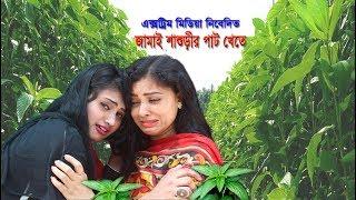 জামাই শাশুড়ির পাট খেতে ।। Jamai Shashurir Pat Khete ।। Bengali short film।। Xtreme Media ।। XM tv ।।