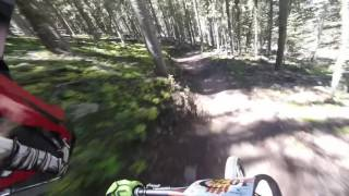 Ziggy Chainless Race - Gravity Games 2016 - Angel Fire Bike Park