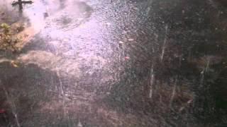 Rain in chennai 2015 November( cheenaiyil mazhai kalam)