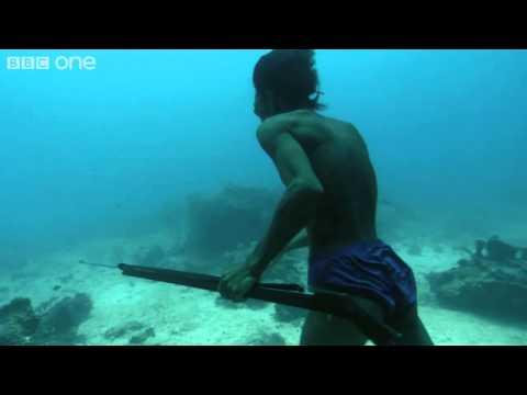 подводная ловля с аквалангом