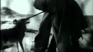 Joseph Beuys w  Coyote SD MPEG