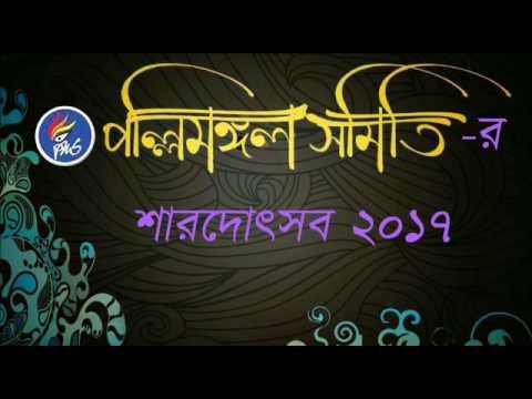 Pally Mangal Samity Durgotsav 2017