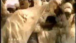 Azadi Junoon