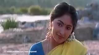 Tamil Song   Sevvanthi   Punnai Vana Poonguyile Poomagale Vaa HQ
