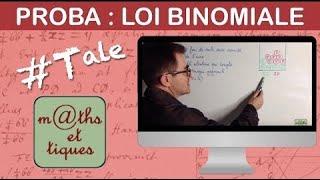 Calculer une probabilité sur une loi binomiale - Première S