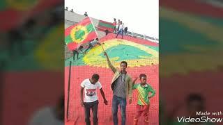 Simannaa ABOf: Addisuu Karrayyu **Abbaa Torbeetu dhufe Obboleessa Qeerroo