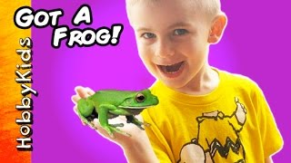 HobbyFrog Buys a REAL Frog! New REPTILE Pet From Petco HobbyKidsTV