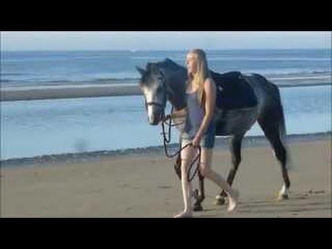 Xxx Mp4 Sexy Girl Riding Horse 3gp Sex