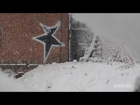 Xxx Mp4 A Brief History Of New York Graffiti Art 3gp Sex
