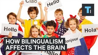 A neuroscientist explains how being bilingual makes your brain more robust