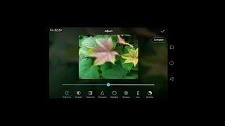 Smartphone Camera Review