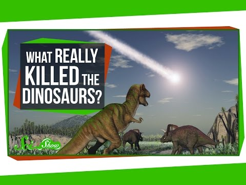What Really Killed the Dinosaurs