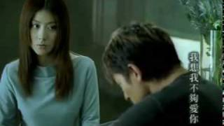 Andy Lau & Kelly Chen - I Don't Love You Enough