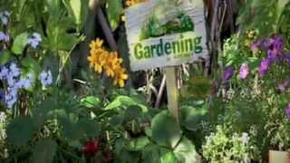 Gardening Australia, Good Garden Design, Kate Seddon Design