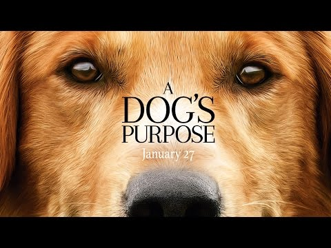 A Dog s Purpose Official Trailer HD