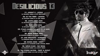 DJ Shadow Dubai | Desilicious 13 | Audio Jukebox