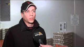Wie regionale Betriebe Lebensmittel produzieren: Deiss Ei in Lengenwang