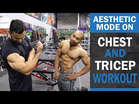 Xxx Mp4 AESTHETIC MODE ON Chest And Tricep Workout DAY 1 Hindi Punjabi 3gp Sex
