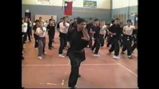 FUNG KUNG FU Training in Italy 馮業高功夫 意大利授課 1983