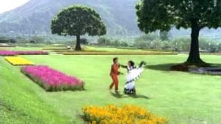 Kothaga Pelliahna Kurravadiki Chakravakam